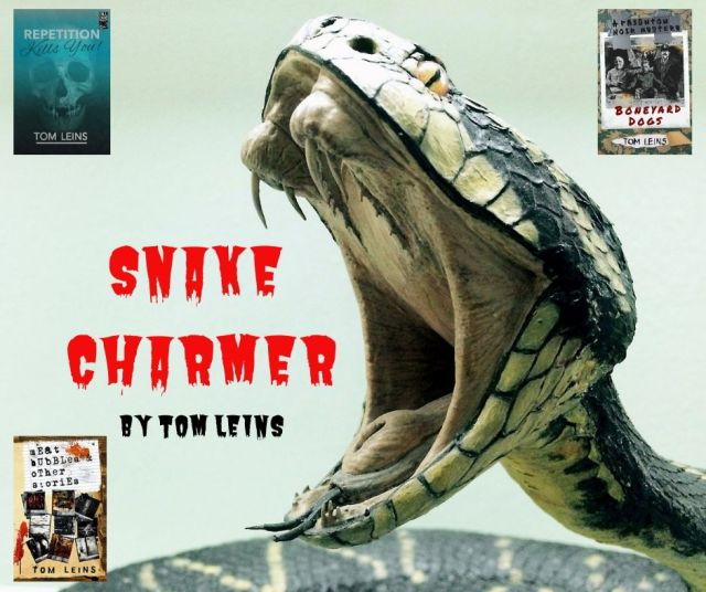 Snake Charmer - Paignton Noir - TOM LEINS (1)